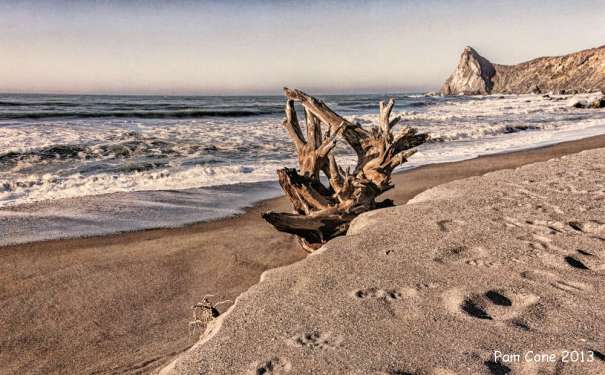 Another version of Driftwood